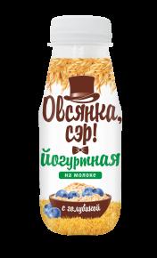 """""""Овсянка, сэр!"""" Йогуртно-овсяный напиток на молоке с голубикой, 250г, 6  шт"""
